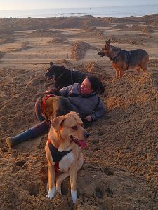 Gedragsbegeleiding, advies en voedingsadvies voor de hond door Denise Vrolijk bij Dog Livity, Den Haag